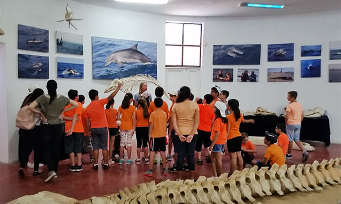 2 השתתפות בסיור לבחירה במרכז הדולפין והים, אשדוד
