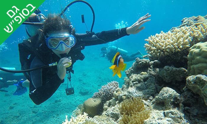 2 צלילה באתר אלמוגים עם אקווה סטאר, אילת