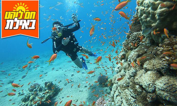 5 צלילה באתר אלמוגים עם אקווה סטאר, אילת