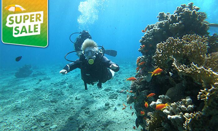 3 צלילה באתר אלמוגים עם אקווה סטאר, אילת