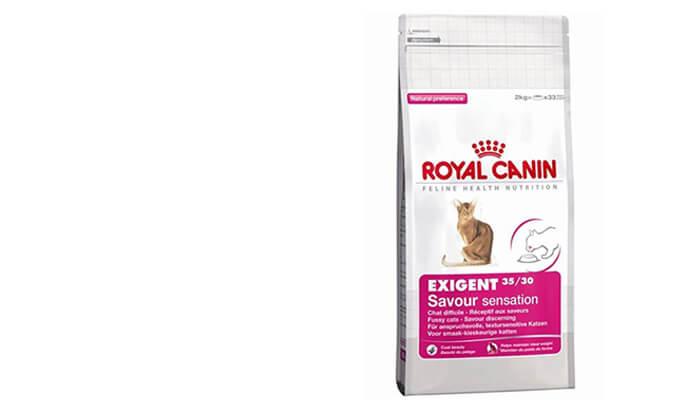 """4 שק מזון יבש 4 ק""""ג לחתולים Royal Canin"""