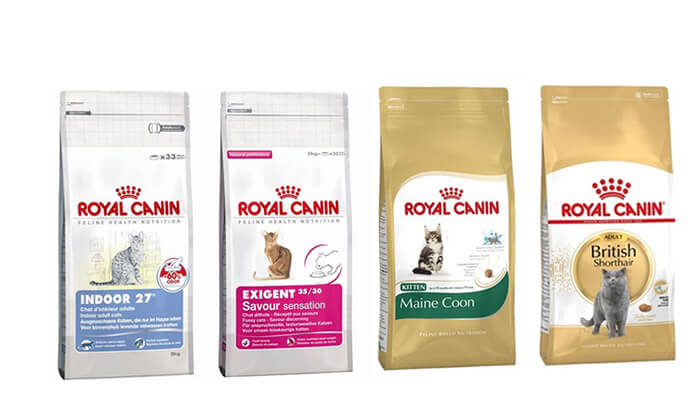 """14 שק מזון יבש 4 ק""""ג לחתולים Royal Canin"""