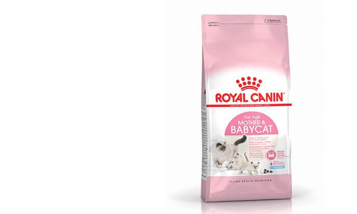 """12 שק מזון יבש 4 ק""""ג לחתולים Royal Canin"""