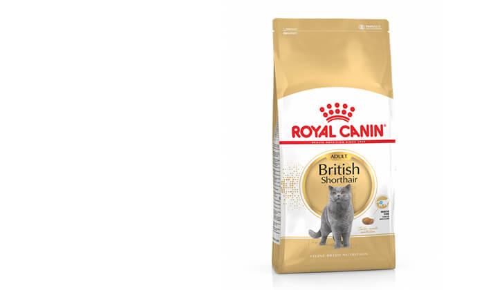 """13 שק מזון יבש 4 ק""""ג לחתולים Royal Canin"""