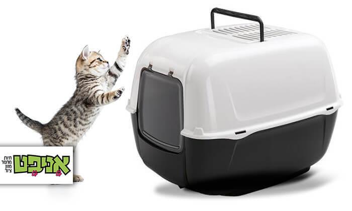2 שירותים לחתול