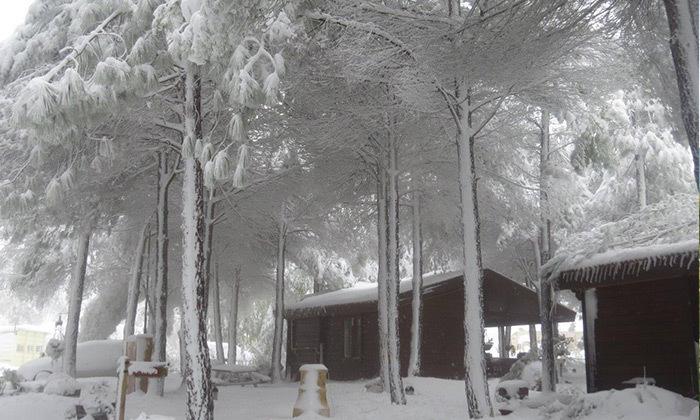 2 חופשה ברמת הגולן - נופים, שלג ושלווה