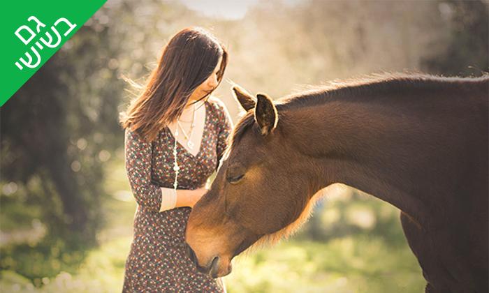 7 רכיבה טיפולית למבוגרים על סוסים - נסוס, רחובות