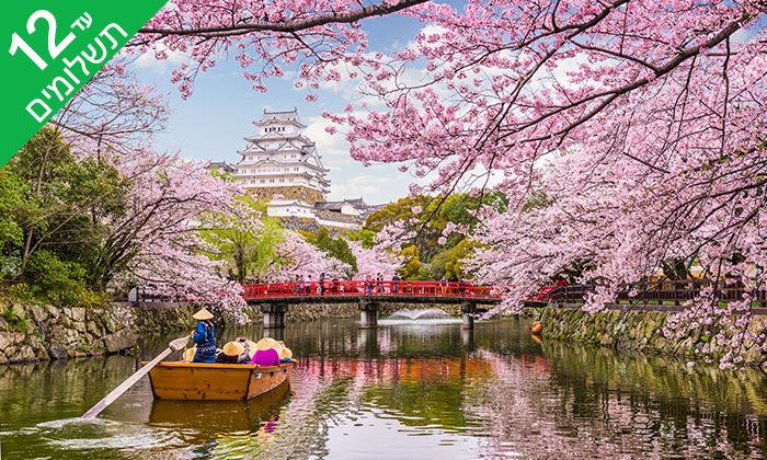 6 טוקיו, קיוטו, אוסקה, האלפים היפנים ועוד - טיול 11 ימים ביפן