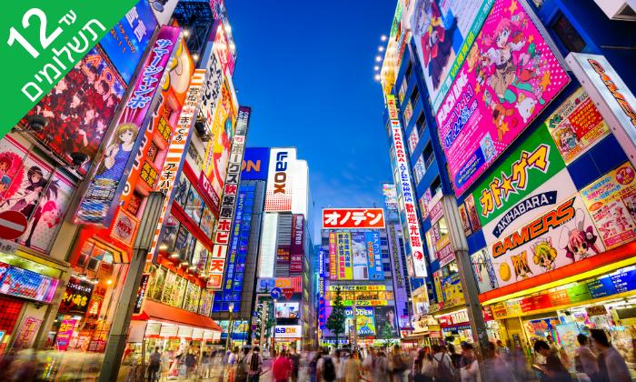 4 טוקיו, קיוטו, אוסקה, האלפים היפנים ועוד - טיול 11 ימים ביפן
