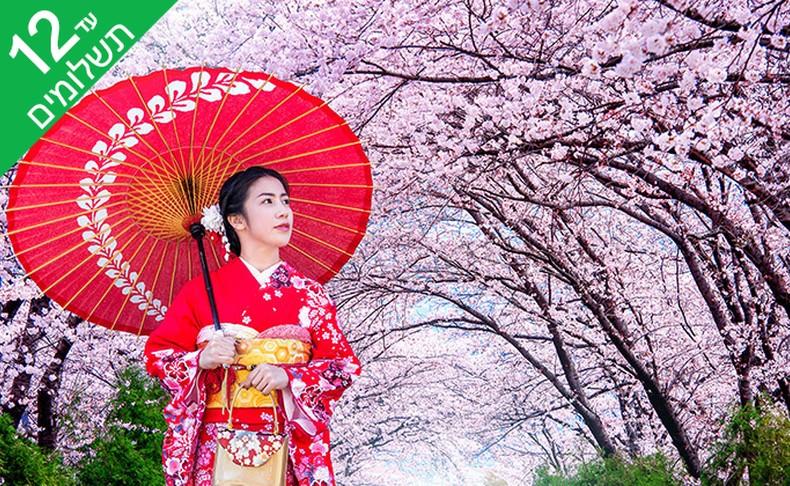 מאורגן 11 ימים ביפן