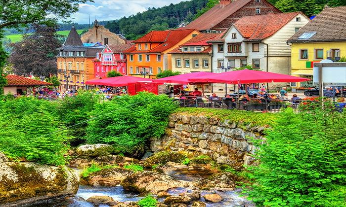 6 יולי-אוגוסט מאורגן למשפחות - שוויץ, אלזס והיער השחור
