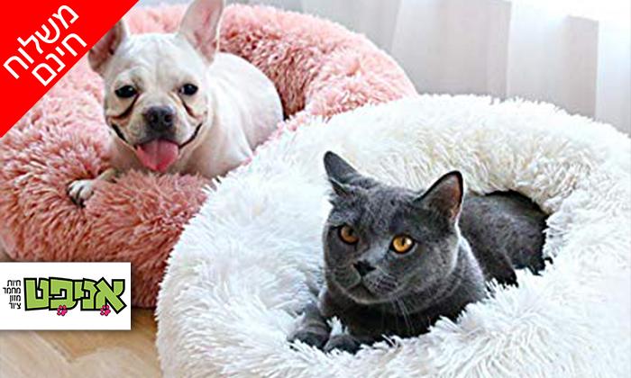 2 מיטה לכלבים וחתולים - משלוח חינם