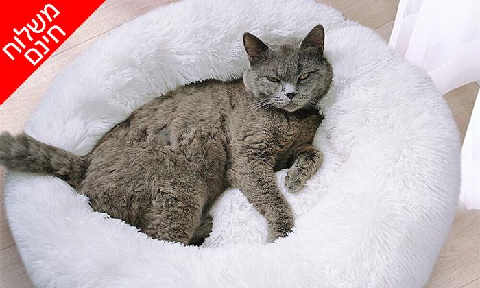 4 מיטה לכלבים וחתולים - משלוח חינם