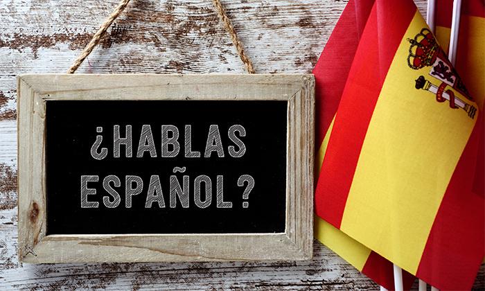 3 לימודי ספרדית ופורטוגזית פרונטלית או אונליין בסניפי המכון לידידות אמריקה