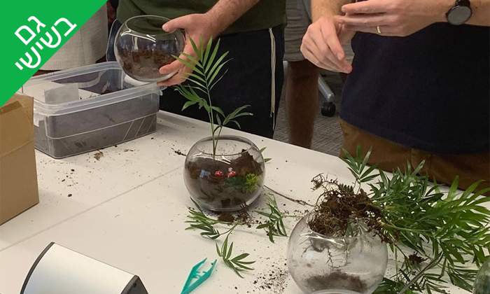 7 סדנת הכנת טרריום עם צמחים אקזוטיים - אקווה טרה ג'ונגל, פתח תקווה