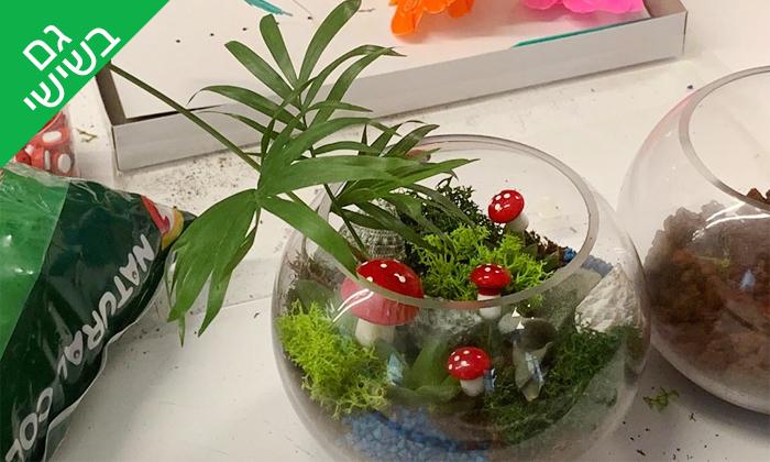 9 סדנת הכנת טרריום עם צמחים אקזוטיים - אקווה טרה ג'ונגל, פתח תקווה