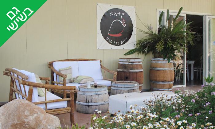 3 סיור וטעימות יין ביקב קדמא, כפר אוריה