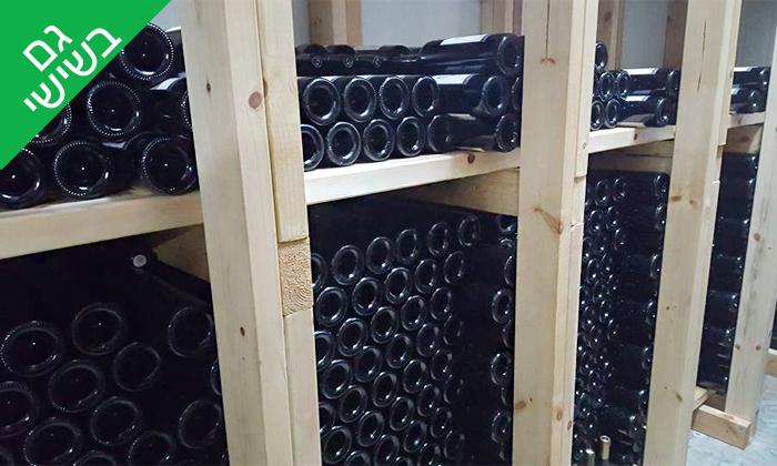 6 סיור וטעימות יין ביקב קדמא, כפר אוריה