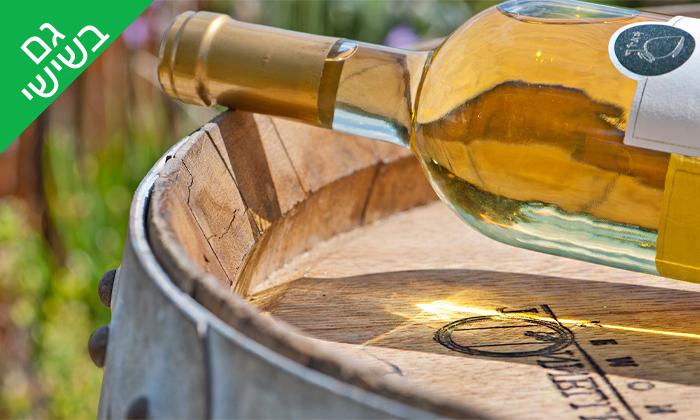 2 סיור וטעימות יין ביקב קדמא, כפר אוריה