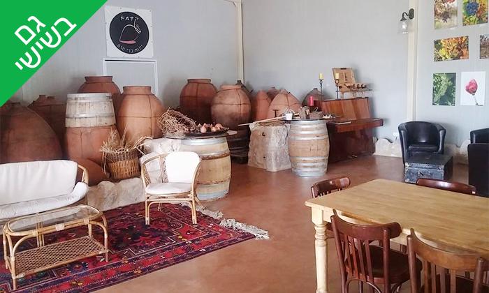 7 סיור וטעימות יין ביקב קדמא, כפר אוריה