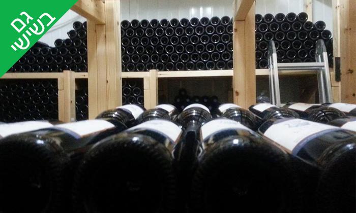 10 סיור וטעימות יין ביקב קדמא, כפר אוריה