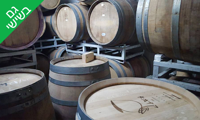 5 סיור וטעימות יין ביקב קדמא, כפר אוריה