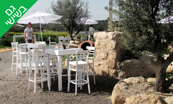 11 סיור וטעימות יין ביקב קדמא, כפר אוריה
