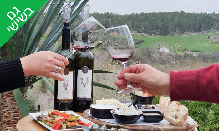4 סיור וטעימות יין ביקב קדמא, כפר אוריה