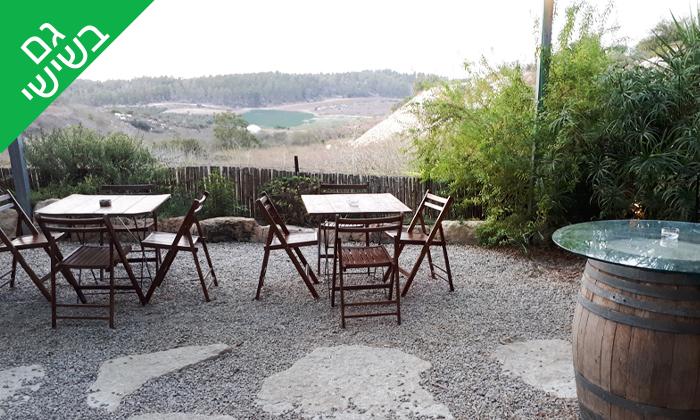 13 סיור וטעימות יין ביקב קדמא, כפר אוריה