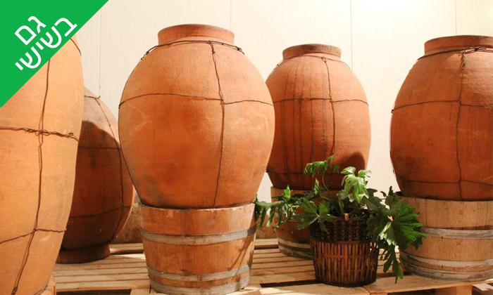 8 סיור וטעימות יין ביקב קדמא, כפר אוריה