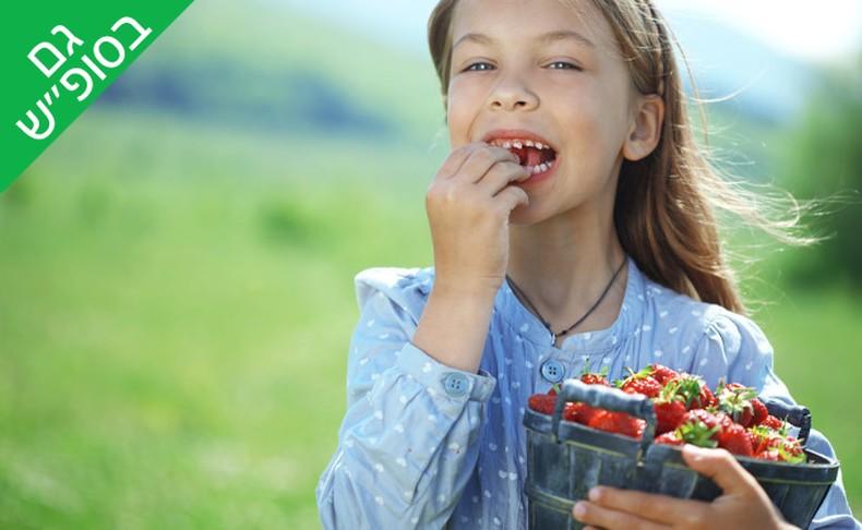 קטיף תותים והפנינג מתנפחים