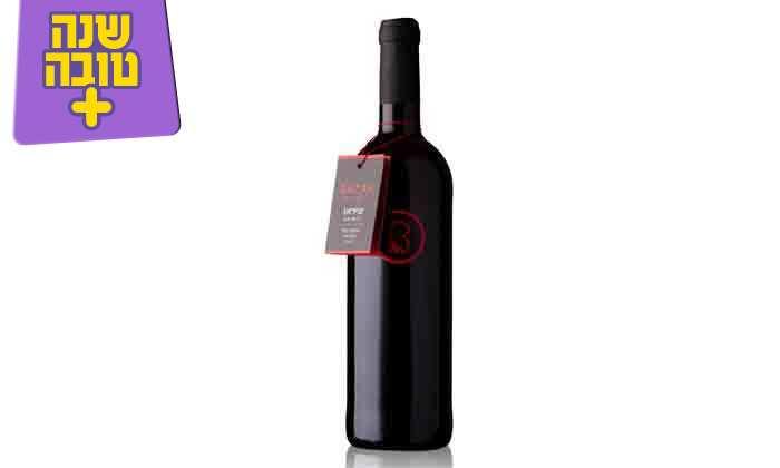 4 מארז יינות כשרים מ-Bazak Winery