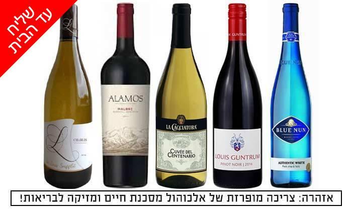 2 מארז 5 בקבוקי יין במשלוח חינם מרשת שר המשקאות
