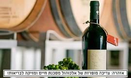 מארז 6 יינות לבחירה מיקב כהנוב