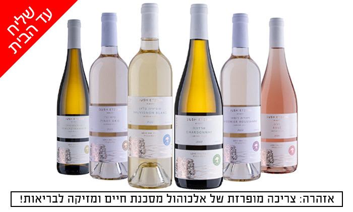 2 מארז 6 בקבוקי יין כשרים למהדרין במשלוח חינם וסיור זוגי ביקב גוש עציון