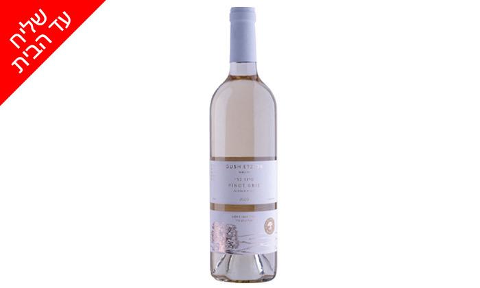 10 מארז 6 בקבוקי יין כשרים למהדרין במשלוח חינם וסיור זוגי ביקב גוש עציון