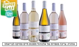 6 יינות במשלוח מיקב גוש עציון