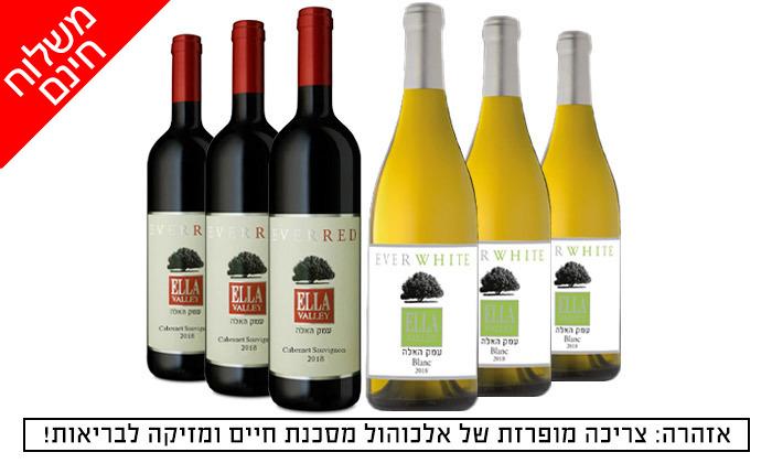 2 מארז יין כשר מיקב עמק האלה - 6 בקבוקים מ'שר המשקאות' - משלוח חינם