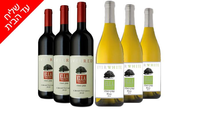 3 מארז יין כשר מיקב עמק האלה - 6 בקבוקים מ'שר המשקאות' - משלוח חינם