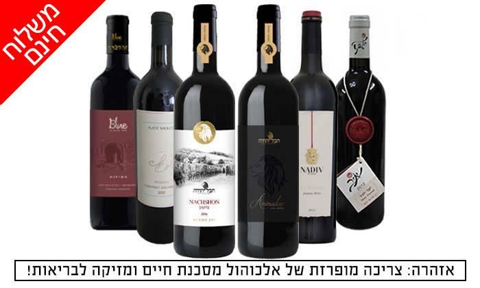 2 מארז 6 יינות ישראלים כשרים פרמיום במשלוח חינם מאנגל - יין של מותגים