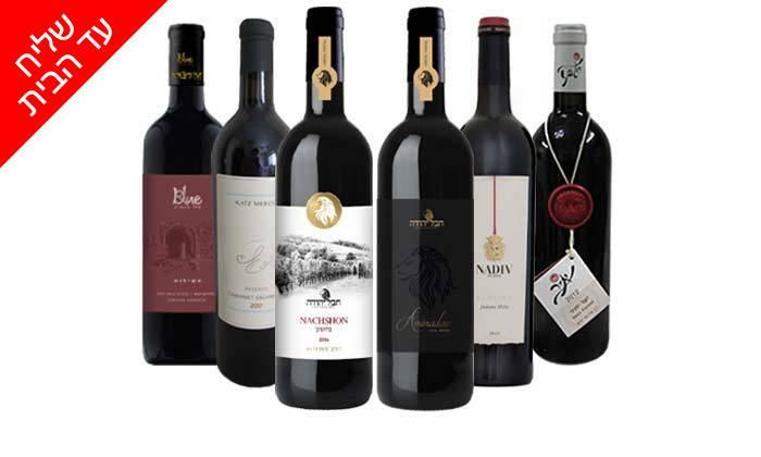 9 מארז 6 יינות ישראלים כשרים פרמיום במשלוח חינם מאנגל - יין של מותגים
