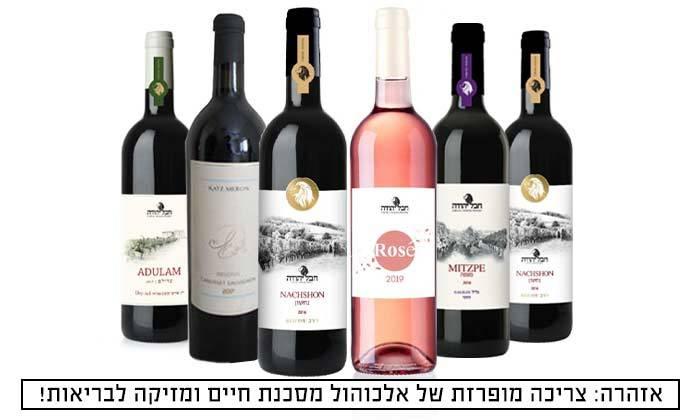 2 מארז 6 בקבוקי יין ישראלי כשר במשלוח חינם מאנגל - יין של מותגים