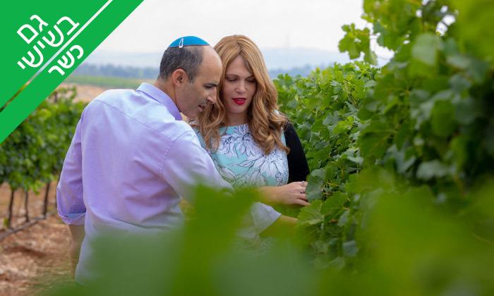 3 ביקור וטעימות יין ביקב טורא ביישוב רחלים