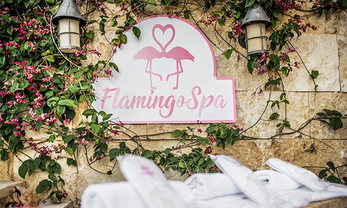 5 חבילות ספא מפנקות עם עיסוי בפלמינגו ספא Flamingo Spa, חיפה