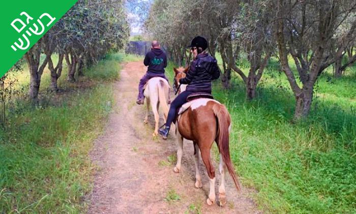 3 טיול רכיבה על סוסים כולל פיקניק רומנטי לזוג - עין ורד