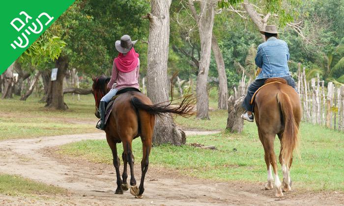 7 טיול רכיבה על סוסים כולל פיקניק רומנטי לזוג - עין ורד