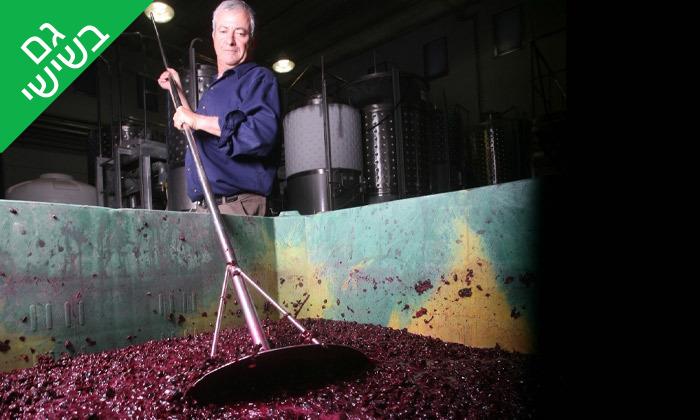 7 סיור זוגי ביקב גוש עציון הכשר כולל טעימות יין, גבינות ובקבוק מתנה