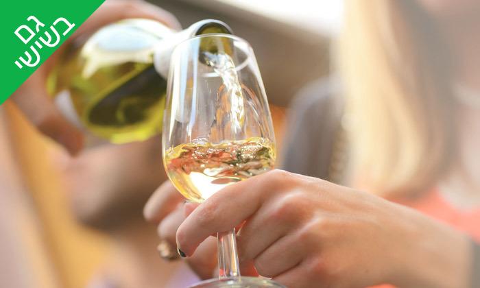 6 סיור זוגי ביקב גוש עציון הכשר כולל טעימות יין, גבינות ובקבוק מתנה