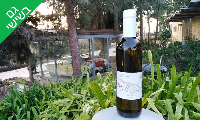 3 סיור זוגי ביקב גוש עציון הכשר כולל טעימות יין, גבינות ובקבוק מתנה