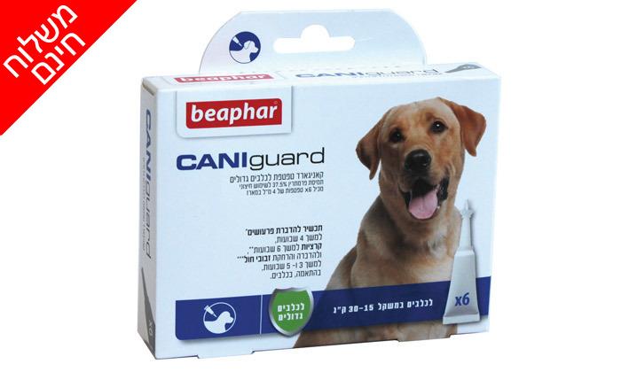 3 מארז אמפולות נגד פרעושים וקרציות בכלבים CANIguard - משלוח חינם